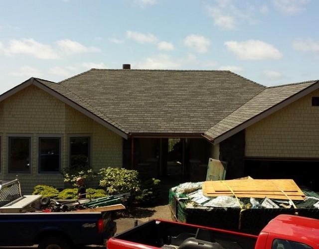 woodland roof2