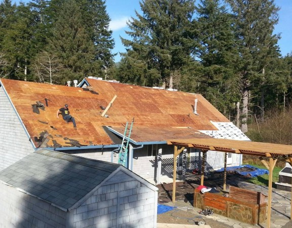 2-19-15-tiger-paw-roof